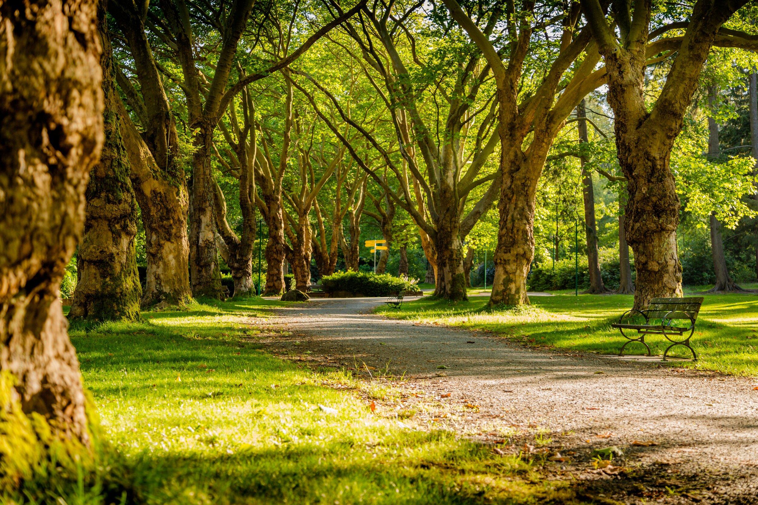 Seagraves Gaines Walking Park